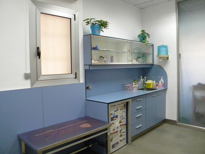 Anoia-veterinària-masquefa-1