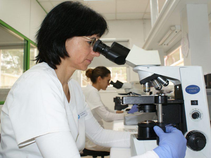Hospital Veterinari de Catalunya Òdena
