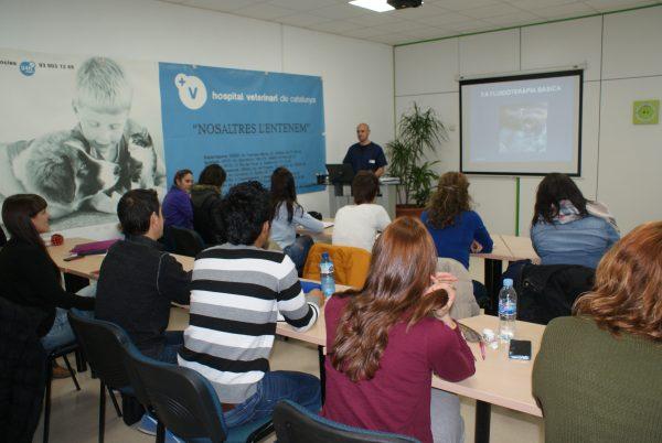 formacion_cursos_de_enfermeria_veterinaria