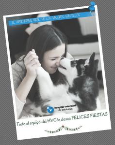 felicitacion-navidad-hvc