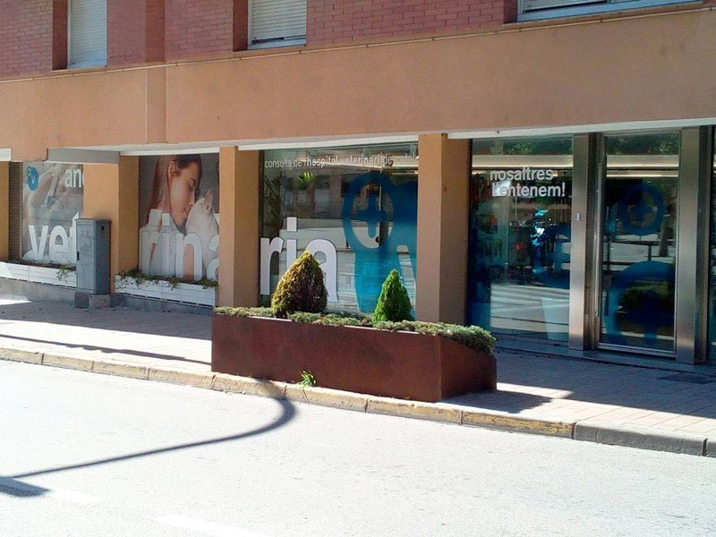 Anoia-veterinària-Piera-1