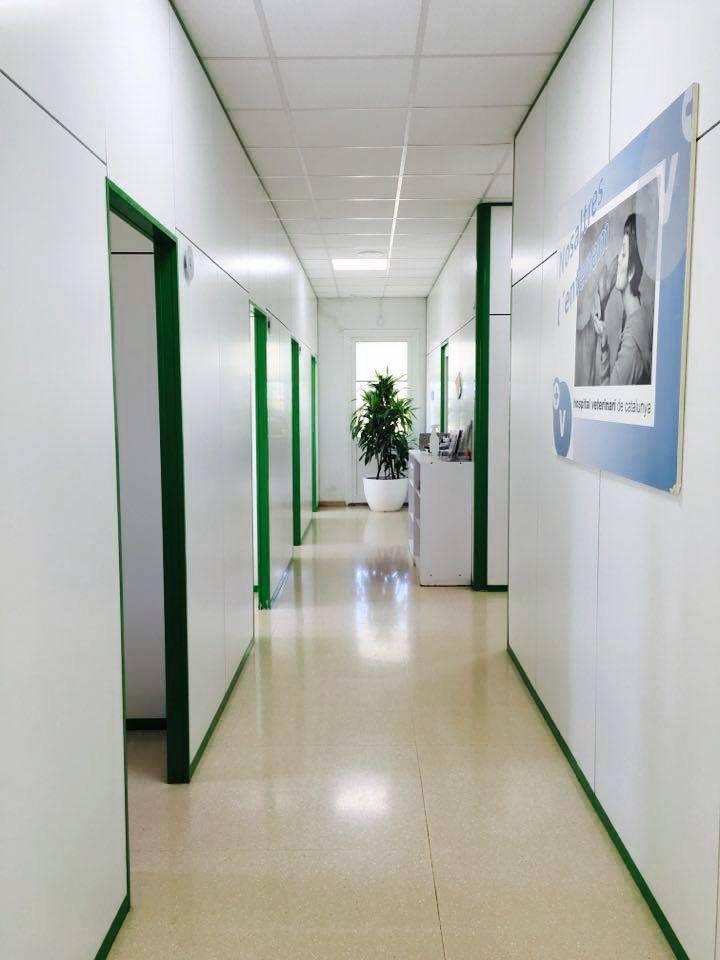 Red de Centros_Odena_interiores