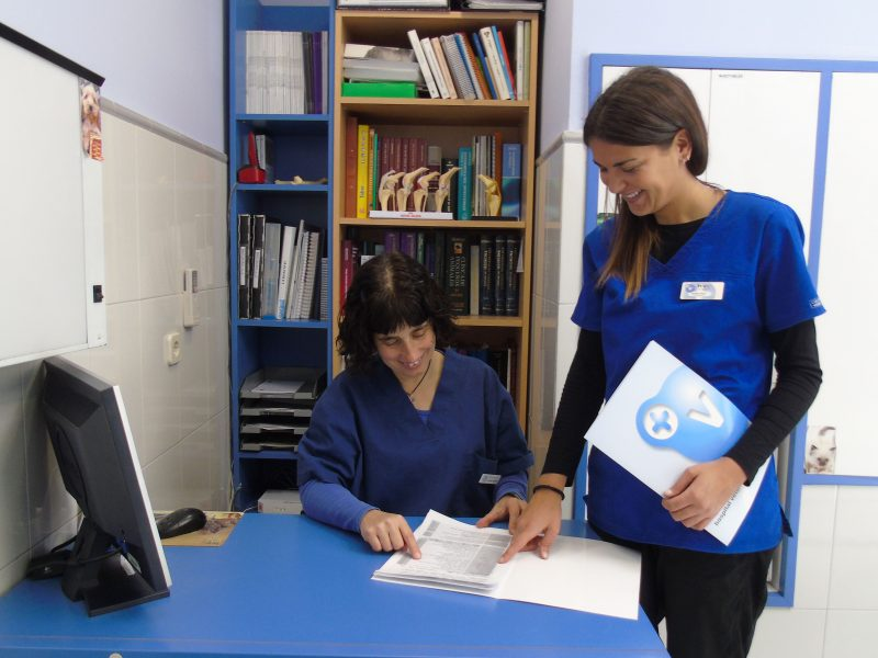 Centre Veterinari Cervera - HVC