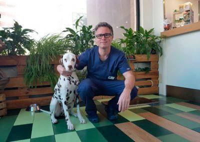 Tractament quirúrgic d'una ulcera duodenal
