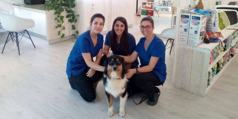 Los centros veterinarios del grupo HVC innovan para usted y su mascota