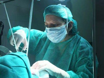 Corrección quirúrgica de las alteraciones respiratorias de los perros braquicéfalos