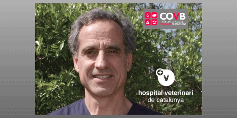 Seminario de traumatología a cargo del Dr. Josep De La Fuene en el COVB