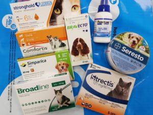 Productos especiales para eliminar la pulga DAPP
